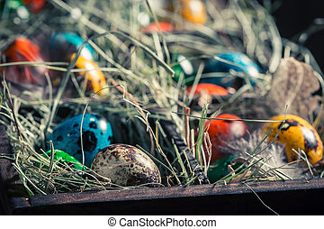 Closeup of colourfull Easter eggs with hay and feathers