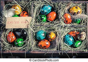 Colourfull eggs for Easter in the box with hay