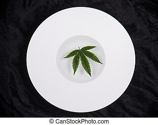 Cannabis leaf floating on a white dish - medical marijuana...