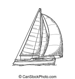 Sailing yacht. Sailboat. Vector drawn flat illustration for yacht club