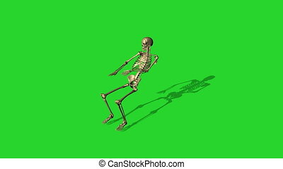 skeleton lying on a chair - separate on green screen - 3d...