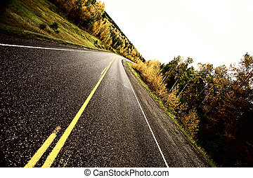 Center lines along a paved road in autumn
