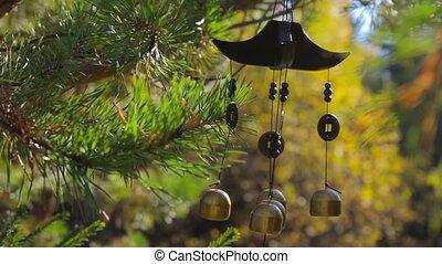 jardín, carillones, balanceo, otoño, sonido, Primer plano,...