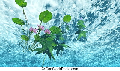 flowers under water in lake water - 3d animation - flowers...