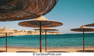Egypt, Empty Sunny Beach with Umbrellas, Sun Beds on the Red...
