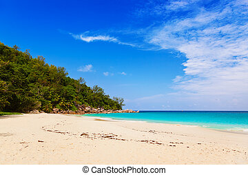 Tropical beach at island Praslin Seychelles - vacation...