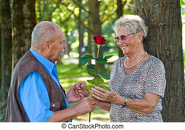 Mature aged couple in love. Man hands over Rose.