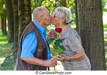 Mature aged couple in love. Man hands over Rose. - Mature...