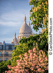 Famous Sacre Coeur Cathedral during spring time in Paris,...