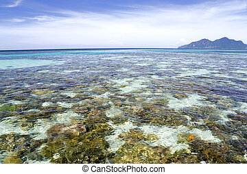 Shallow Open Sea and Island - Image of the shallow open sea...