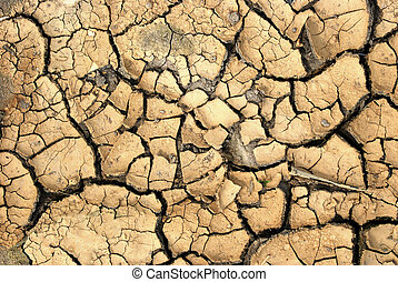 dry ground - texture of a drying ground
