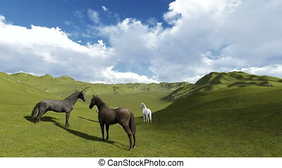 3d animation-scene of Morning Pasture. Herd of horses...