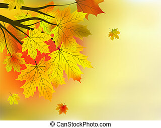 Autumn leaves, very shallow focus - Autumn leaves, very...