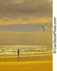 Kite Surfer  - Kite surfer in Fuerteventura, Spain
