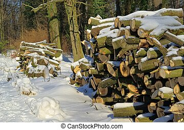 Holzstapel im Winter - stack of wood in winter 07