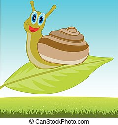 Snail on sheet
