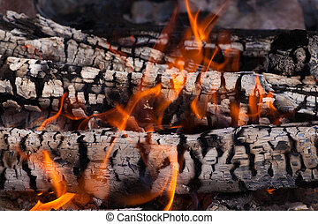 wood coals and flames