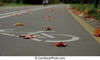 Bicycle sign on the road, bicyclist. Autumn. Close up,...