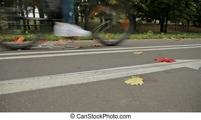 Bicycle arrow sign on the road, bicyclist. Autumn. Slider shot