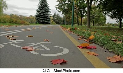 Bicycle sign on the road. Autumn. Close up, horizontal...