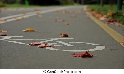 Bicycle sign on the road, bicyclist. Autumn. Close up, horizontal slider shot