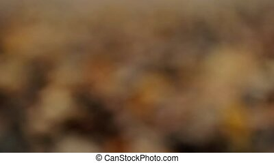 Unfocused brown background. Slider shot - Unfocused brown...