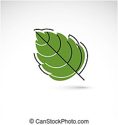 Hand-drawn illustration of simple hazel tree leaf isolated....