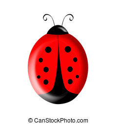 Ladybird Illustration - Cute illustration of a red and black...