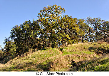 Northern California Recreation and Wildlife Refuge on...