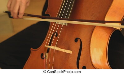 Cello. - Professional musician playing the cello.