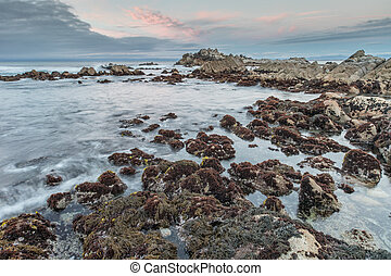 Rocky Coast Sunset at Asilomar State Beach - Monterey...