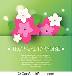 Tropical banner with exotic orchid flowers. Vector illustration. Design template for summer party invitation, spa salons, luxury resort advertising, gift voucher