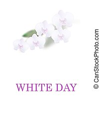 Greeting card. White Day. Beautiful orchid flowers and leaves. Isolated on white background. illustration