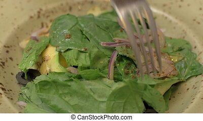 Salad with chicken and vegetables - Close-up shot of eating...