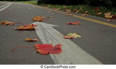 Bicycle arrow sign on the road. Autumn. Slider shot.