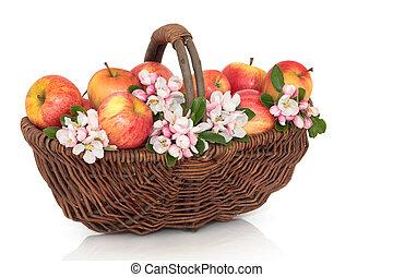 Apple and Blossom Beauty