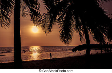 Silhouette of coconut tree at the beach