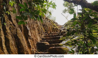 Beautiful nature. The staircase in the rock. Vietnamese...
