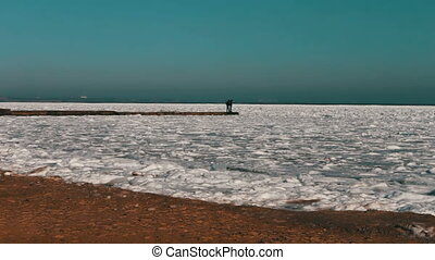 Seagulls sitting on ice-covered sea - Two people standing on...