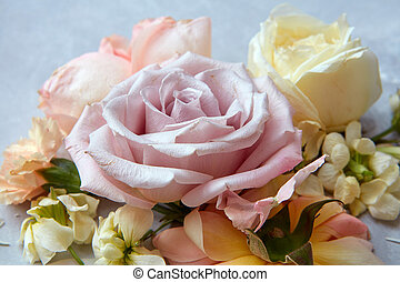 Composition of flowers on grey background - Composition of...