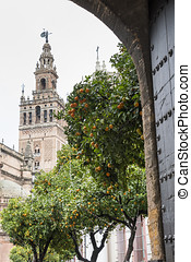 Giralda, tower cathedral in Seville, Spain