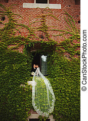 Bride's veil lies over the ivy hanging from the window