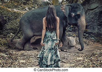 Brunette woman staring at the wild elephant - Brunette woman...