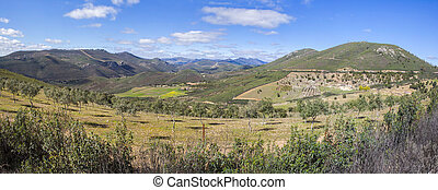 Olive trees sustainable farming at Villuercas geopark,...