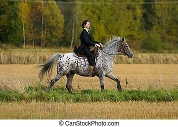 Tux-2 - A man in tuxedo riding appaloosa mare with western...