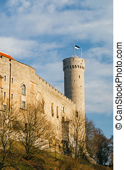 Pikk Hermann or Tall Hermann tower, Tallinn, Estonia -...