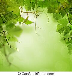 ブドウ, 葉, 緑, 背景