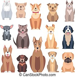 Different Kinds of Dog Breeds on White Background -...