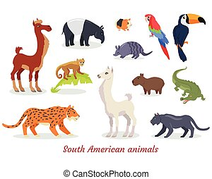 South American Animals Cartoon Vectors Set - Collection of...