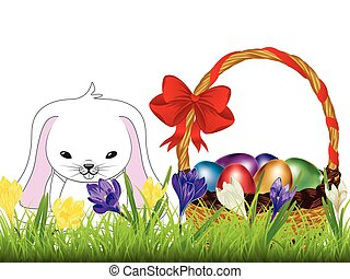 Crocus and Easter Rabbit - Spring flowers, colorful crocus...
